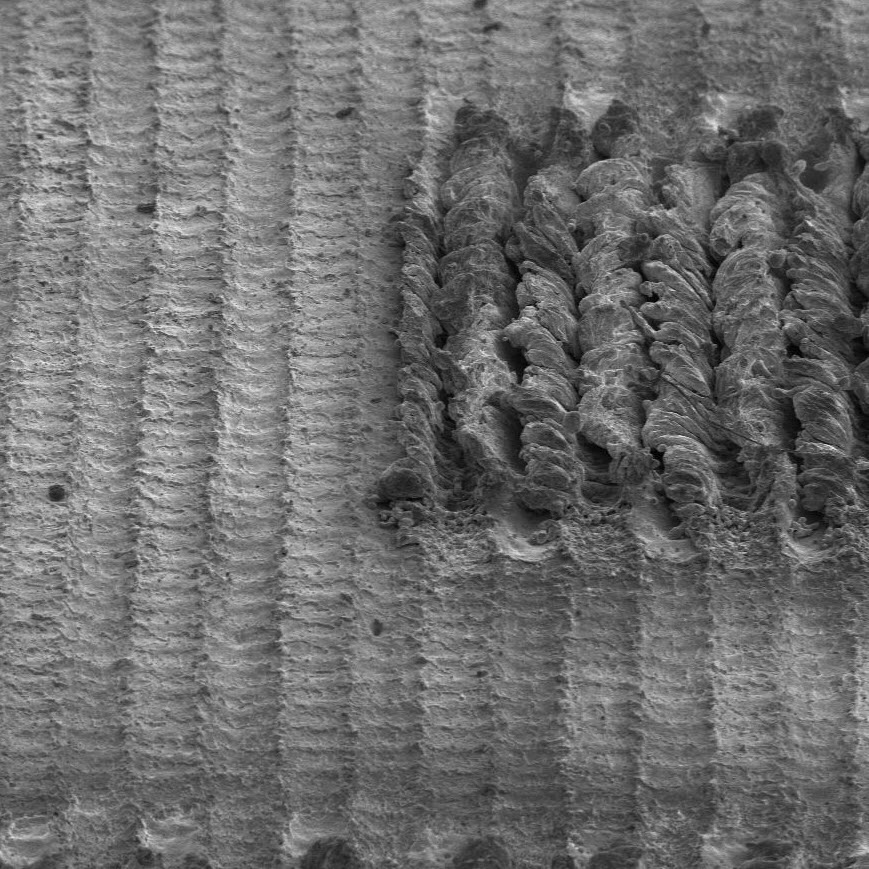 Cells of a data matrix code etched on an aluminum surface, viewed using an electron microscope. Part of the surface shows diffuse reflections caused by small changes in roughness. Another part of the surface shows absorption caused by chaotic changes in roughness.