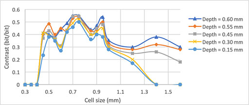 Evolution of contrast in relationship with cell size